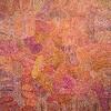 Aboriginal Painting, NSW Art Gallery
