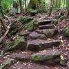 The Mossman Gorge trail is steep.