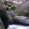 This is the other stream in Mossman Gorge.