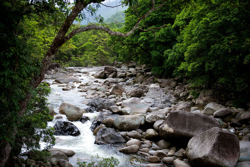 Mossman Gorge has two streams that provide drinking water for Port Douglas.