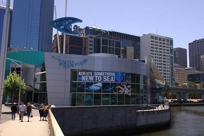 Melbourne Aquarium 27th November 2006