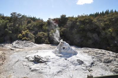09 Jan 28 The Springs, Rotorua