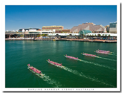 Dragonboat races in Darling Harbour, Sydney, Australia