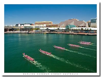 Dragonboat races in Darling Harbour, Sydney, Australia