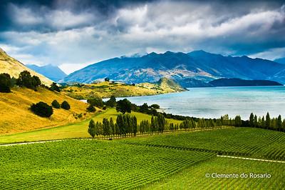 File Ref: 2009-03-08-Lake Tekapo 1671