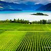 File Ref: 2009-03-08-Lake Tekapo 1653