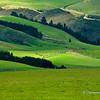 File Ref: 2009-03-09-Christchurch 1785