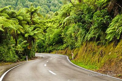 File Ref:2009-02-21-Rotorua 078