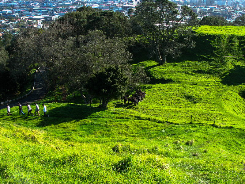 Looking down the side of Mt. Eden to some of the smaller craters.