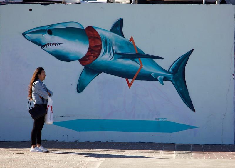Bondi wall art