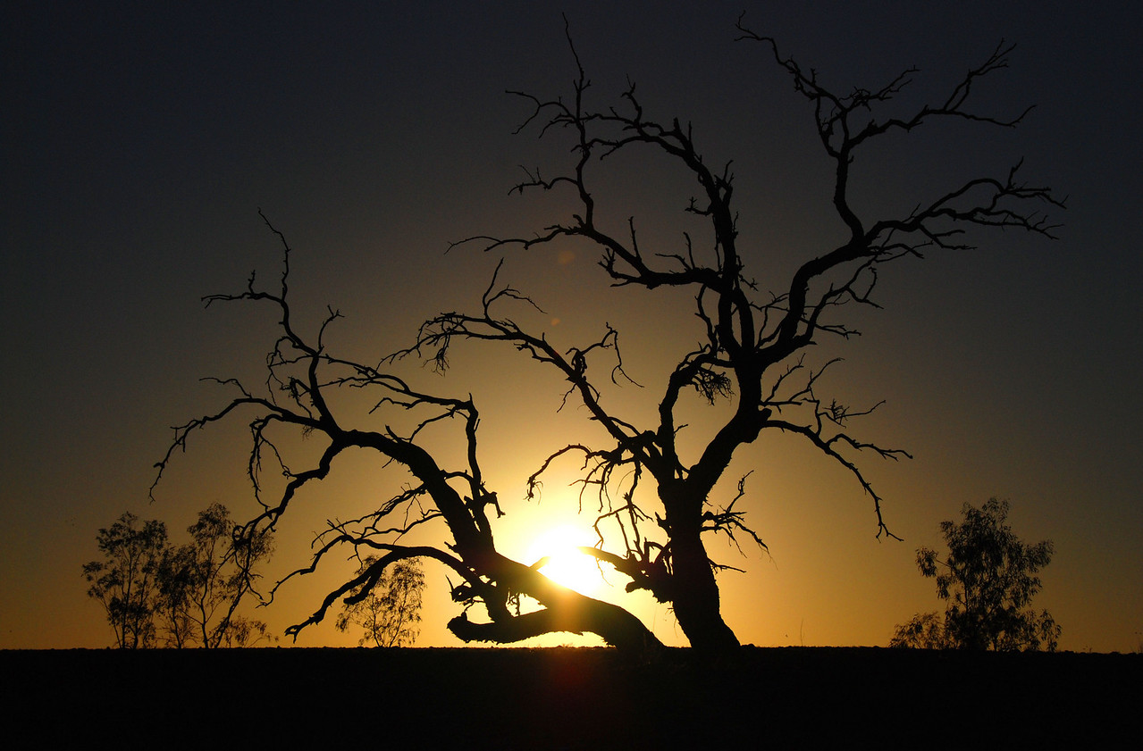 Sunrise at Innamincka