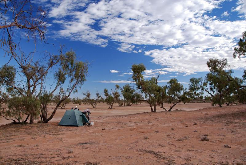 Bush camping off the Strzelecki  Track, SA