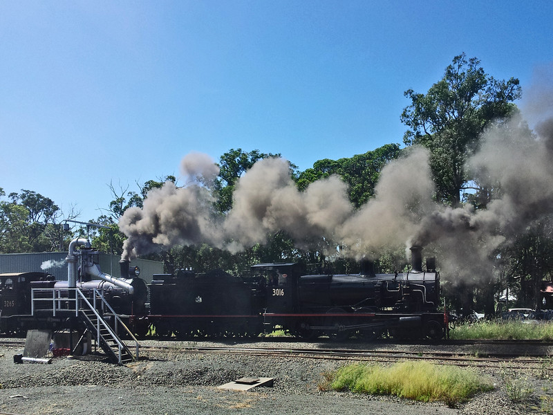 1 March 2015: Trainworks Railway Museum, Thirlmere, New South Wales. 2015 Festival of Steam.