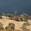 Black skies to the southwest: sign of an approaching winter storm, Reids Flat, New South Wales.