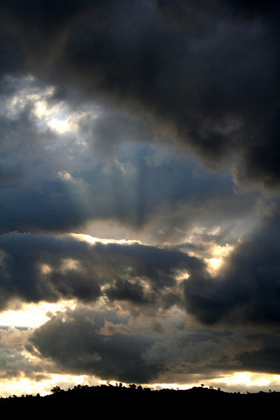 Crepuscular rays: late afternoon sunburst on a grey winter's day at Reids Flat, New South Wales.