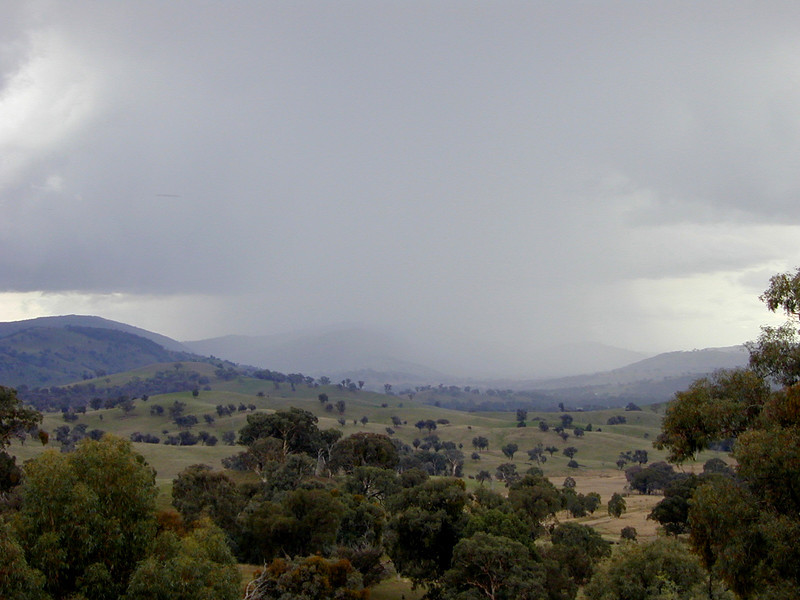 Storm sweeping up the valley from the direction of Wyangala. If you look carefully you can see a strange cigar-shaped object in the cloud about a quarter of the way in from the left hand edge  of the picture. I didn't notice anything unusual at the time, and it doesn't appear in any of the other photographs I took within seconds of this one. It might be dust on the lens... or it might just be a UFO.
