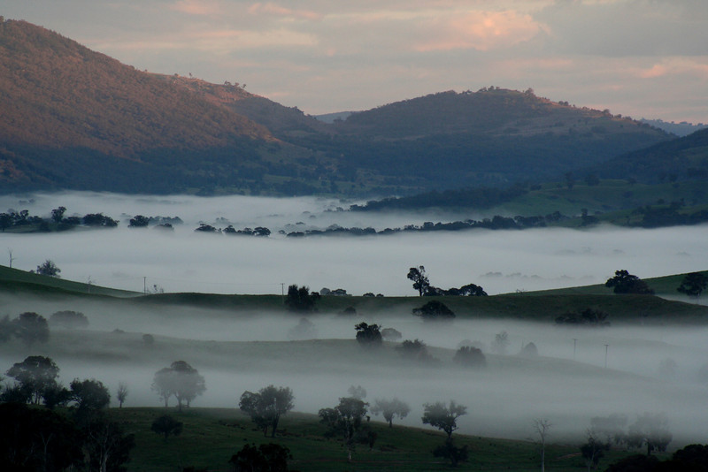 The Lachlan Valley blanketed in morning fog at Reids Flat, New South Wales, 12 August, 2009.