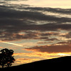 Dusk hillside silhouette with golden contrail, Reids Flat, New South Wales.
