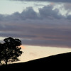 April 2007: Late afternoon hillside silhouette, Reids Flat, New South Wales.