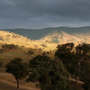 Morning landscape near Reids Flat, New South Wales.