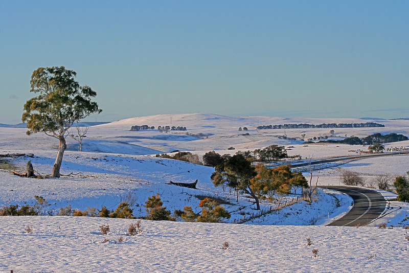 18 July, 2015: Snowscape on the road south of Crookwell, New South Wales.