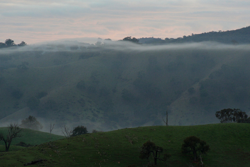 A strand of mist hangs gossamer-thin in the valley directly above the Lachlan River at Reids Flat, New South Wales, as the horizon is tinged with the first stirrings of sunrise.