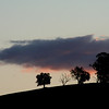 Hillside silhouette, Reids Flat, New South Wales, September 2007.