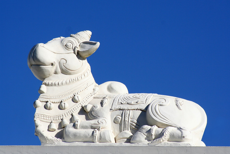 Nandi parapet figure. Sri Venkateswara Hindu Temple, Helensburgh, New South Wales. Located south of Sydney, the temple is the biggest Hindu place of worship in the southern hemisphere.