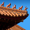Roof detail, Nan Tien Temple. Located in the suburb of  Berkeley in the city of Wollongong, south of Sydney, the Nan Tien Temple possesses the largest terracotta tile roof in the southern hemisphere.