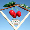 The big cherry sign, Young, New South Wales, Australia.
