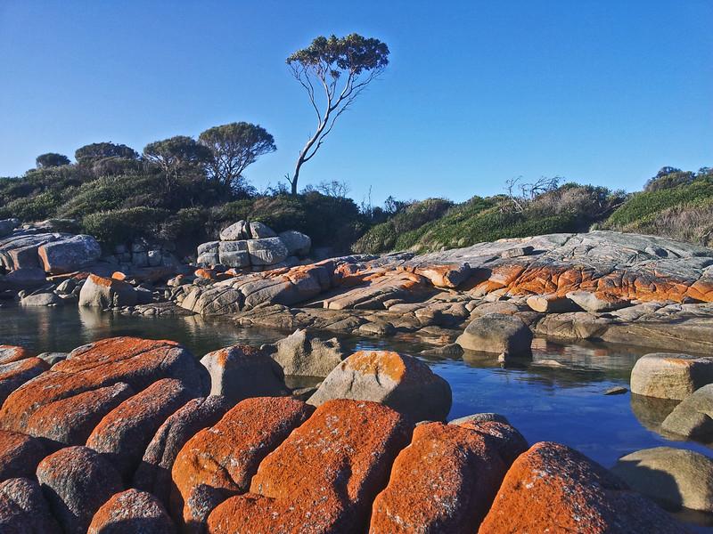 28 July 2015: Bay of Fires coastal landscape, Binalong Bay, Tasmania.