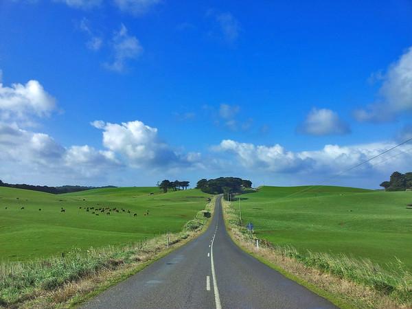 1 August 2015: Landscape near Marrawah, Tasmania.