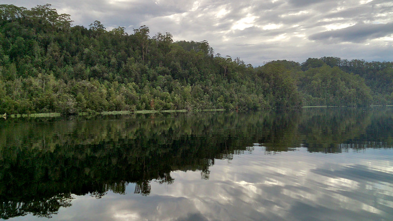 8 April 2017: Gordon River, Tasmania.