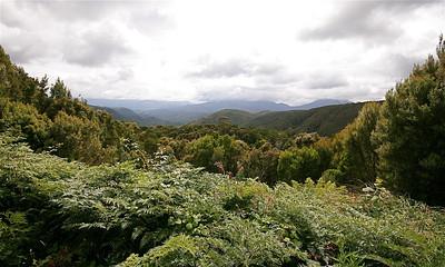 Western Wilderness, Strahan, Tasmanië, Australië.