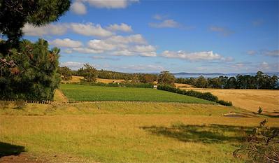 Tasman Peninsula, Tasmanië, Australië.