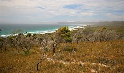 Stevig windje. Freycinet National Park, Tasmanië, Australië.