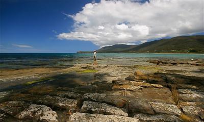 Tesselated Pavement State Reserve. Tasman Peninsula, Tasmanië, Australië.