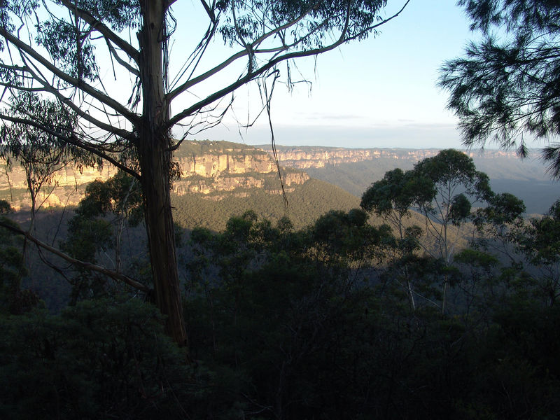 "The view from Katoomba of the Australia's ""Grand Canyon"""