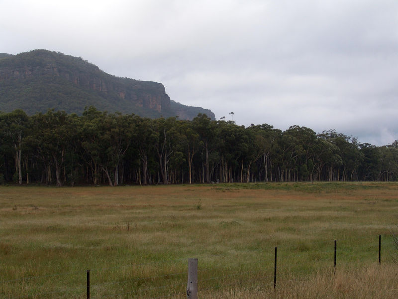 Looking at the Blue Mountains from Megalong Valley, NSW
