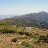 1 January 2012 @ Mount Hotham, Victoria: Alpine summer wildflower meadow; view to the northwest from Mount Hotham.