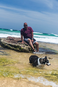 little austinmer dog beach
