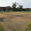 Sir Donald Bradman Oval IMG_5378