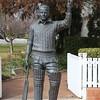 Sir Donald Bradman Oval IMG_5372
