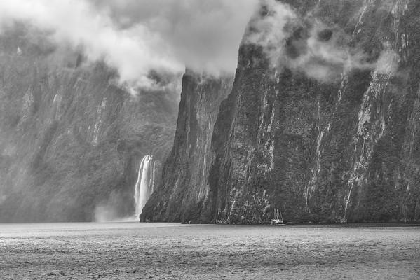 Fjordland - NZ