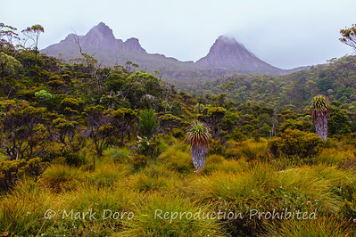 Mist rises over Cradle Mountain