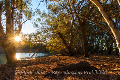 End of the day as the light sweeps across the river. Darling River, NSW
