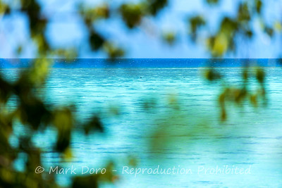 Blue water magic, Heron Island, Queensland