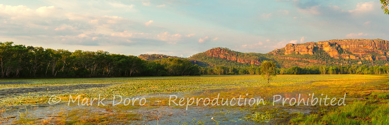 Late afternoon panorama, Anbangbang Billabong, Kakadu, Northern Territory