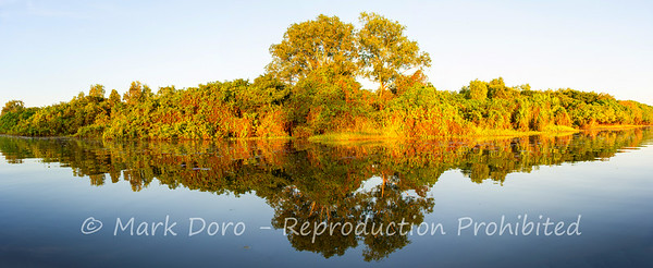 Late afternoon panorama on Yellow Water Billabong, Kakadu, Northern Territory