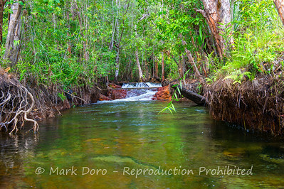 Crystal clear creek flowing into Buley Rockhole, Litchfield, Northern Territory